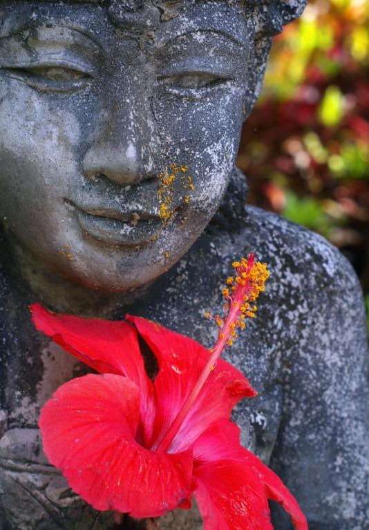 Flower Budda